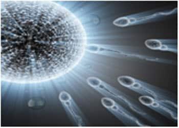 תנועתיות זרע תקינה. טיפול לתנועת זרע חלשה בדיקור סיני
